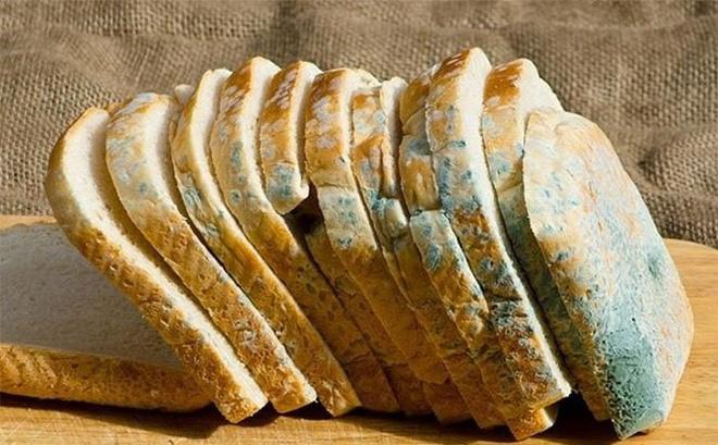 bánh mì bị mốc
